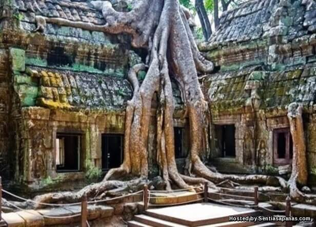 Siem Reap, Kemboja