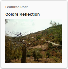 http://www.thebirdali.com/2011/10/colors-reflection.html
