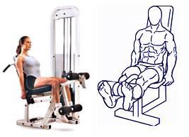 Ejercicios para subir de peso extensión cuadríceps