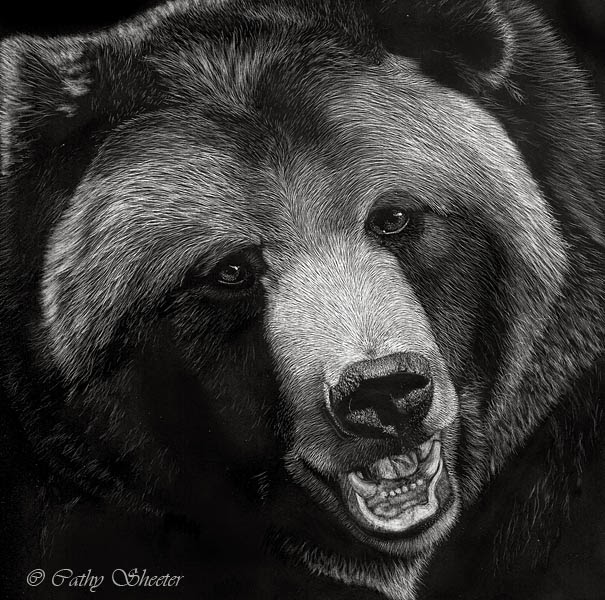 Realistic Animal Drawings Realistic Animal Drawing Grizzly Bear Head