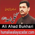 http://www.humaliwalayazadar.com/2016/10/ali-ahad-bukhari-nohay-2017.html
