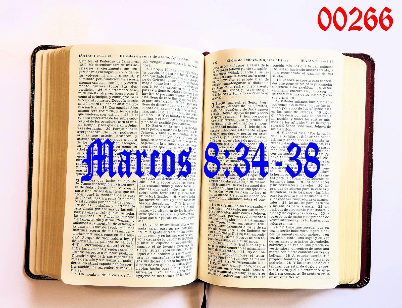 Blogs de Francisco Marín Torres TJ: 0266 LECTURA DIARIA DE LA BIBLIA ...