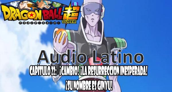 Ver capitulo 22 en audio latino online, Gohan se come una semilla del ermitaño recuperándose, Piccolo ataca a Tagoma.