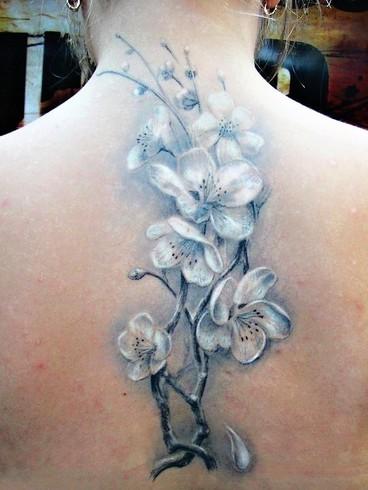 A Może By Tak Tatuaż Października 2012