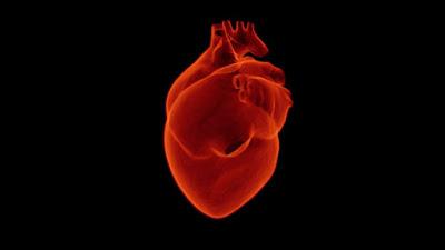 jantung, penyakit jantung, kesehatan jantung, sindrom sinus sakit, sakit sindrom sinus, sick sinus syndrome, sinoatrial node