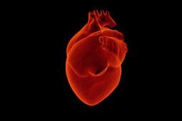 Pengertian sindrom sinus sakit (sick sinus syndrome) pada jantung