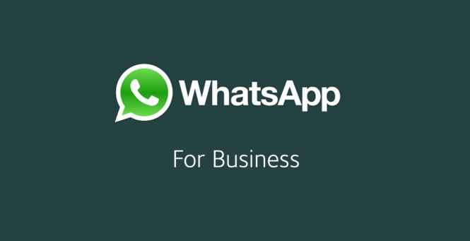 WhatsApp Business APK 2019 Download