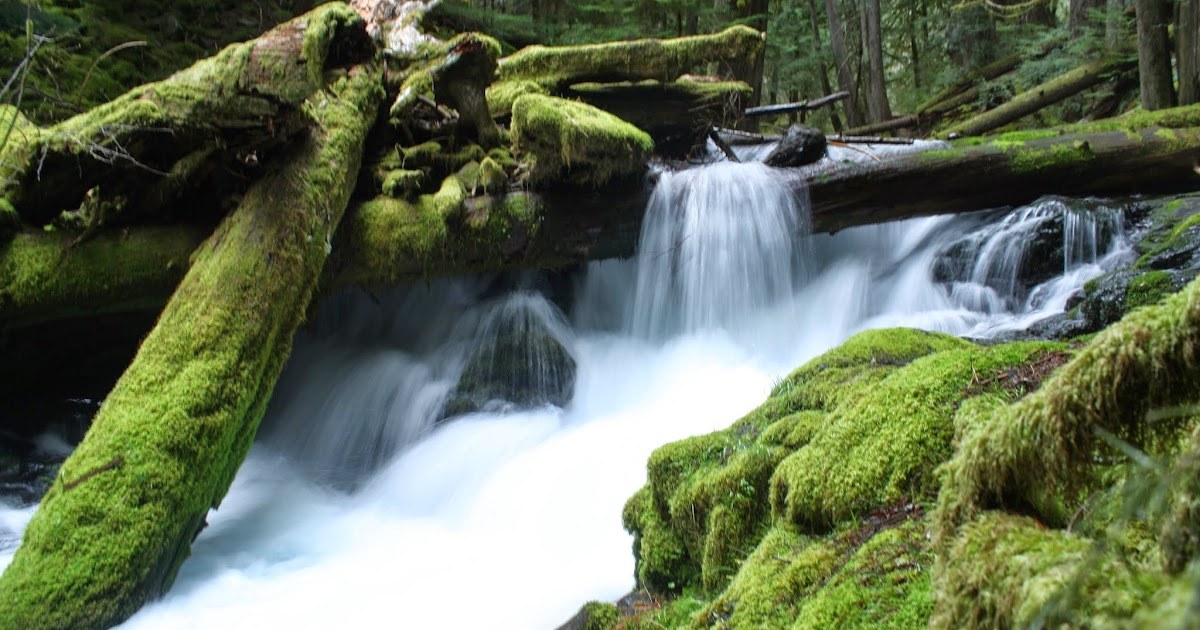 Detailed information about Duncan Creek Falls in Skamania