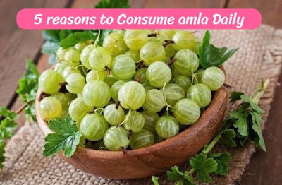 5 Reasons To Consume Amla Daily, govthubgk