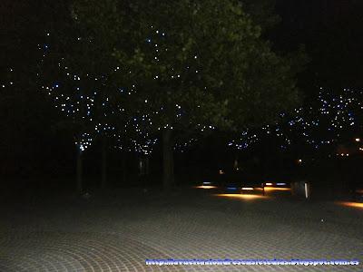 Árboles adornados cerca de Gabriel's Wharf