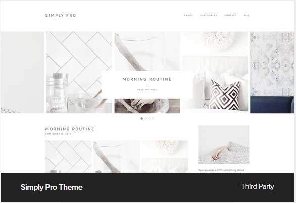 Simply Pro theme Award Winning Pro Themes for Wordpress Blog : Award Winning Blog