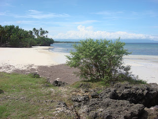 beach in Siquijor Philippines