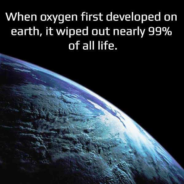 When oxygen first developed on earth, it wiped out nearly 99% of all Human life