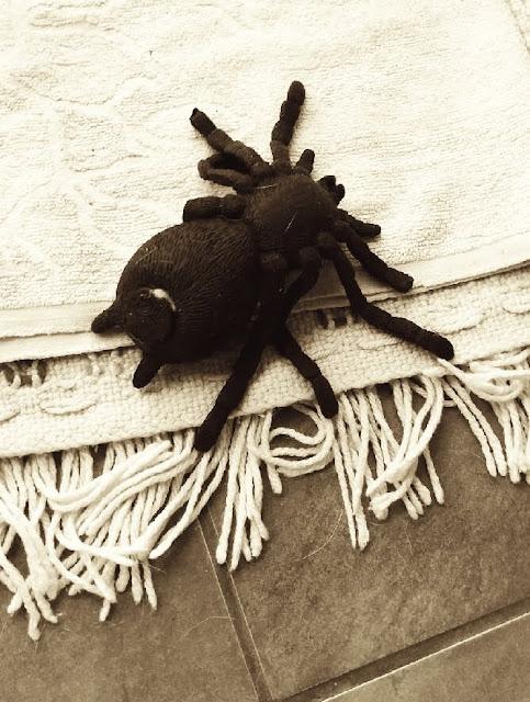 jak pozbyć się pająka