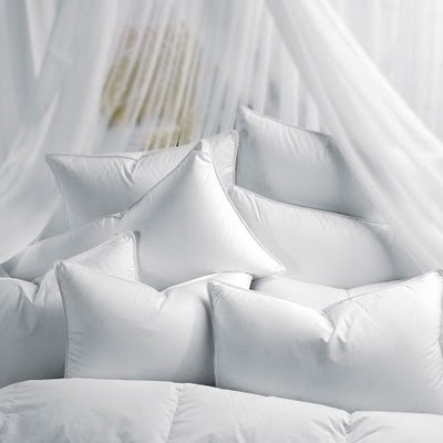 Fit And Healthy Lifestyle Guide To Choose The Best Pillow