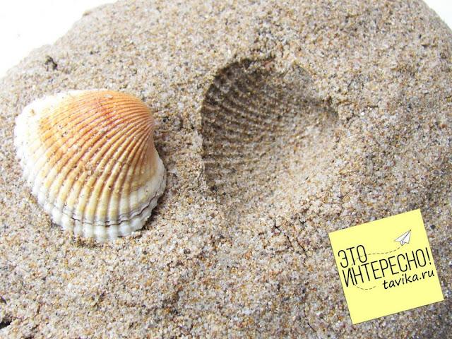 игры для детей с песком