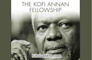 Kofi Annan Fellowships MBA Program in Europe for Developing Country Students