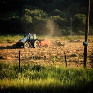 Me entristece pensar que hoy, debido a la  deforestación que provoca la agricultura  de los monocultivos, muchos arroyos se  han secado y los que todavía llevan agua  están tan contaminados por agroquímicos  que su agua ya no se puede beber.