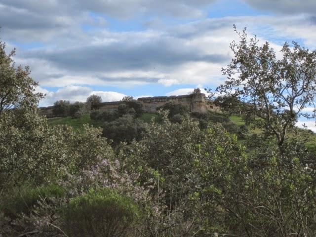 Castillo de El Vacar