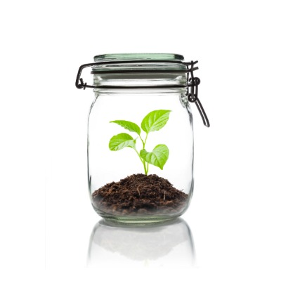 COOL KID SCIENCE: Grow a bean in a jar . I still remember doing this as a kid!  Can't wait to do it with my little :)