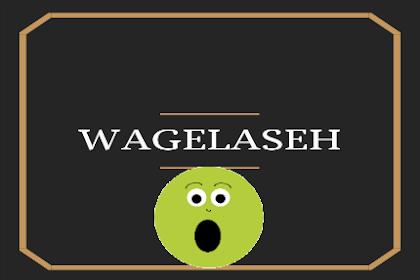 Bahasa Gaul WAGELASEH, Cari Tahu Yuk! Artinya ...