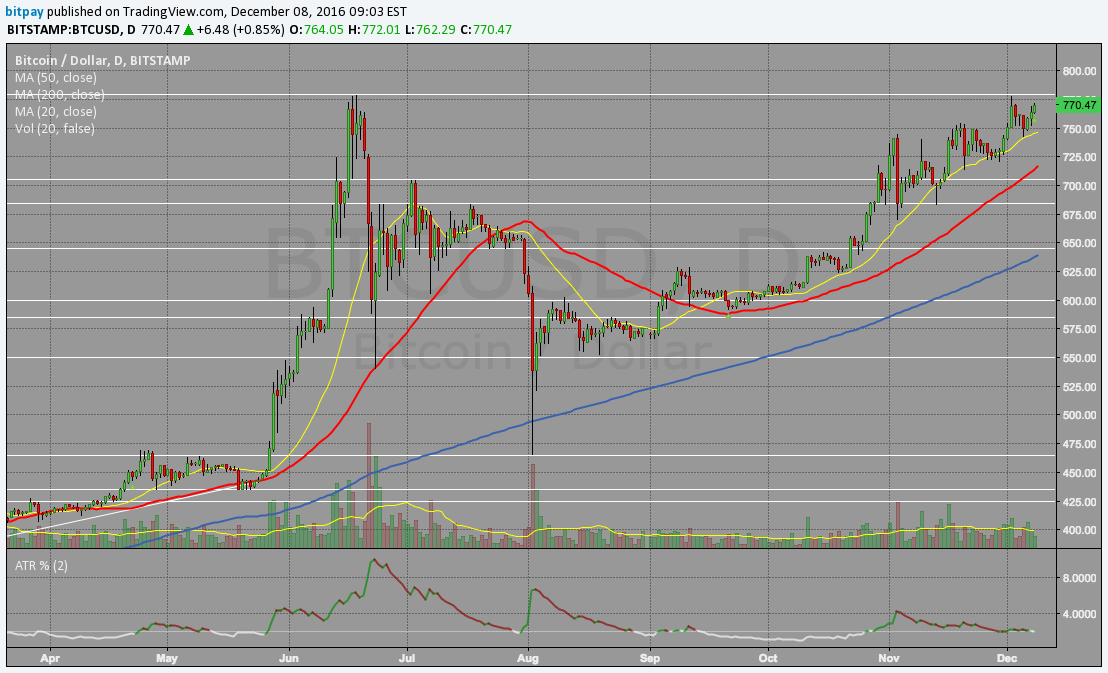 Bitcoin Vietnam News Chart | Source: bitpay - TradingView