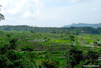Bali in Indonesia - a 10 day trip between temple and rice terraces