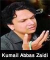 http://www.humaliwalayazadar.com/2018/02/syed-kumail-abbas-zaidi-nohay-2016-to.html