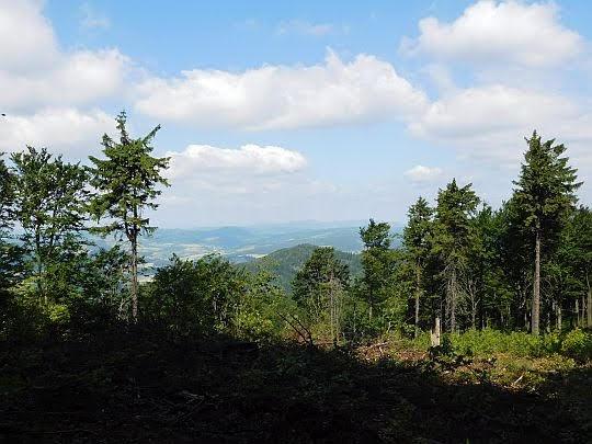 Widok na Wzgórza Włodzickie.