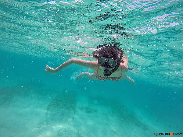 spot-snorkeling-badul