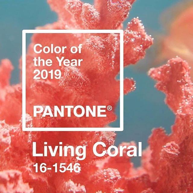 Pantone 2019: Linving Coral