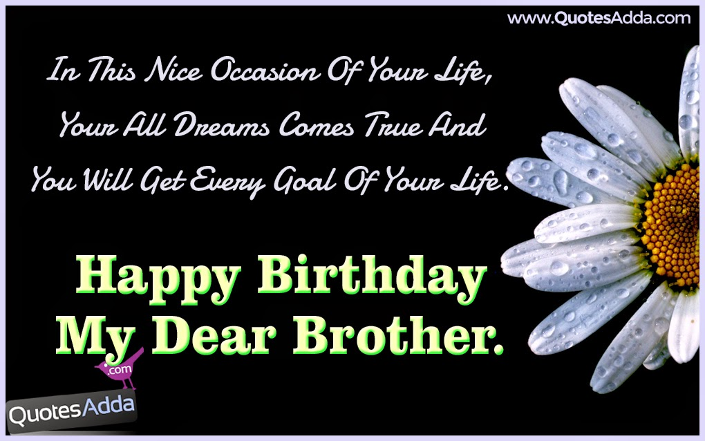 Birthday Wishes Essay For Brother