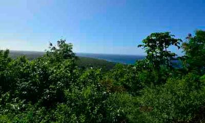 View from Pumpkin Hill Utila