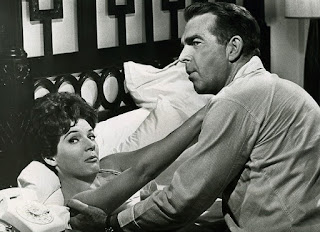 Kisses For My President 1964 comedy Fred MacMurray Polly Bergen first husband gentleman