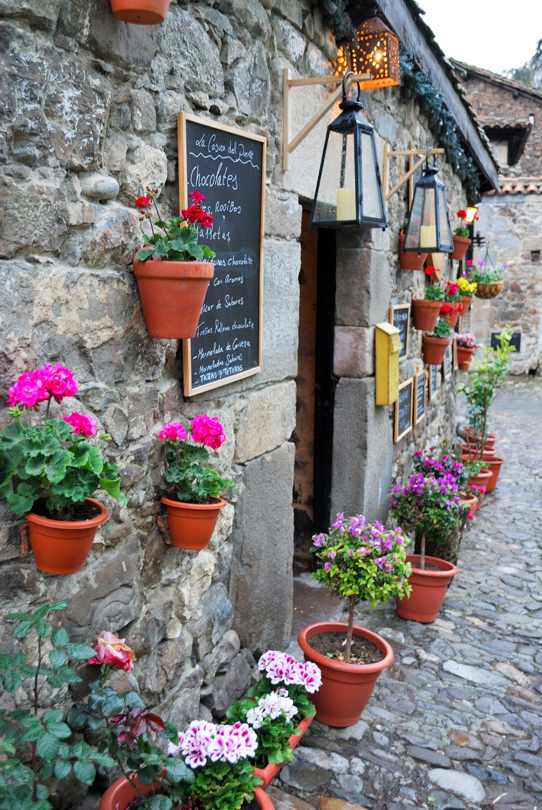 potes cantabria spain mountain flores tienda flower