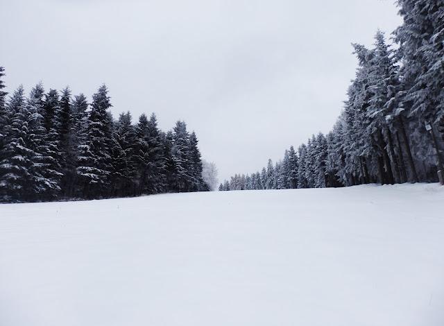 Trasa narciarska w Kasinie.