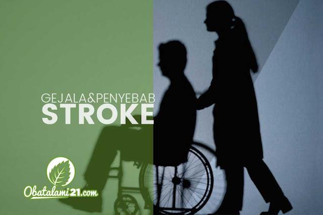 Gejala, Penyebab dan Cara Mengobati Stroke Secara Alami