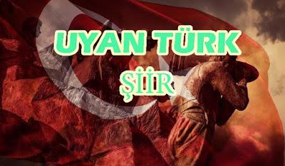 Uyan Türk - Şiir