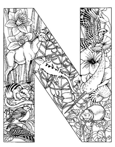 Detailed Coloring Pages Only Coloring Pages  Australian Animal Colouring