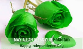 Dpz collections for facebook : independence day