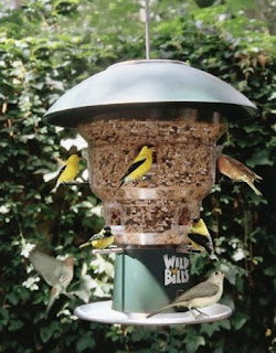 Squirrel electric shock Bird Feeder