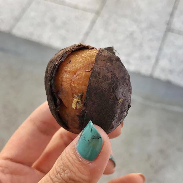 Koyasan chestnuts