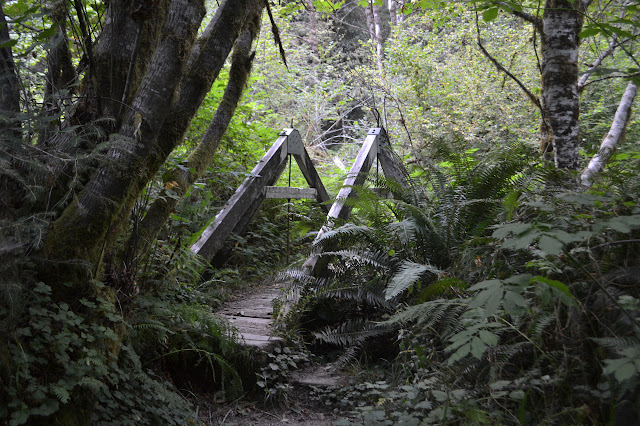 A-frame style bridge