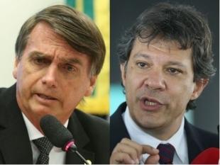 Bolsonaro e Haddad aparecem tecnicamente empatados em nova pesquisa