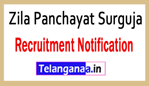 Zila Panchayat Surguja Recruitment