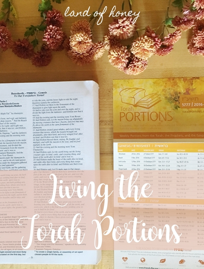 Ideas, crafts, and recipes for studying Scripture and learning the Torah portions | Land of Honey