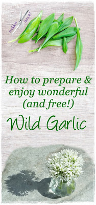 wild garlic pinterest image