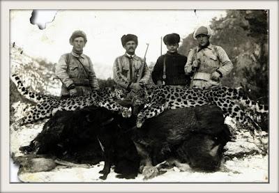 The Yankovskys