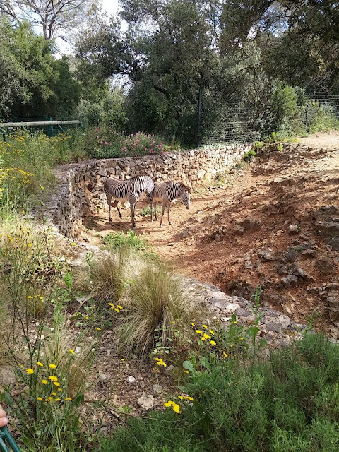 Zoo du Lunaret - Montpellier