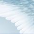 Vídeo de um cinegrafista amador Inglês flagra aparição de suposto anjo no céu do Reino Unido